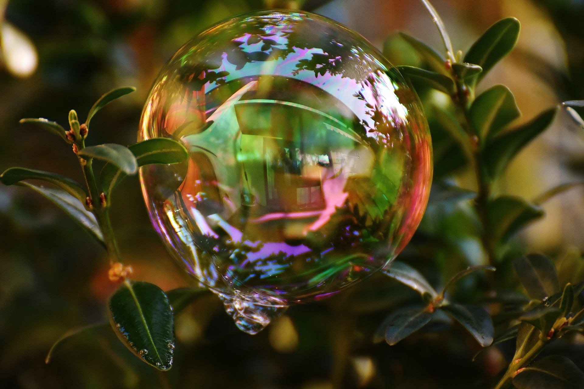 soap-bubble-1873425_1920
