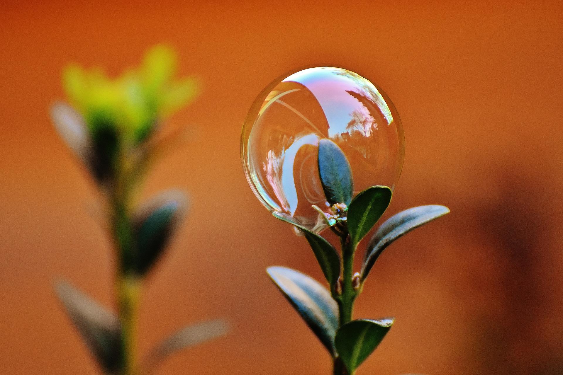 soap-bubble-1900032_1920