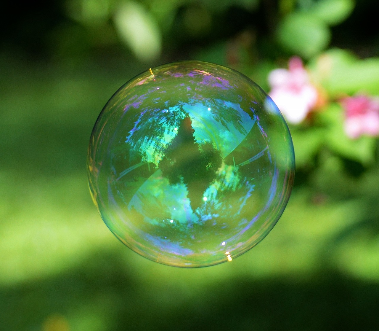 soap-bubble-824576_1280